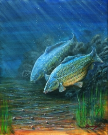 No.1 - THERE 'AVIN IT! - The 'Carp Watching' Series Of Paintings -