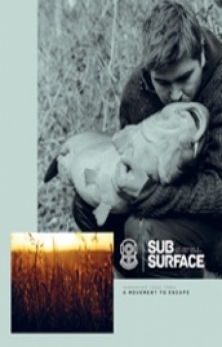 Subsurface 3 -