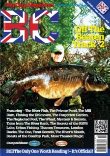Issue 213, Volume 35