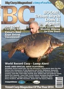 Issue 228, Volume 38