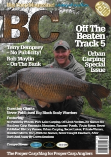 Issue 233, Volume 38